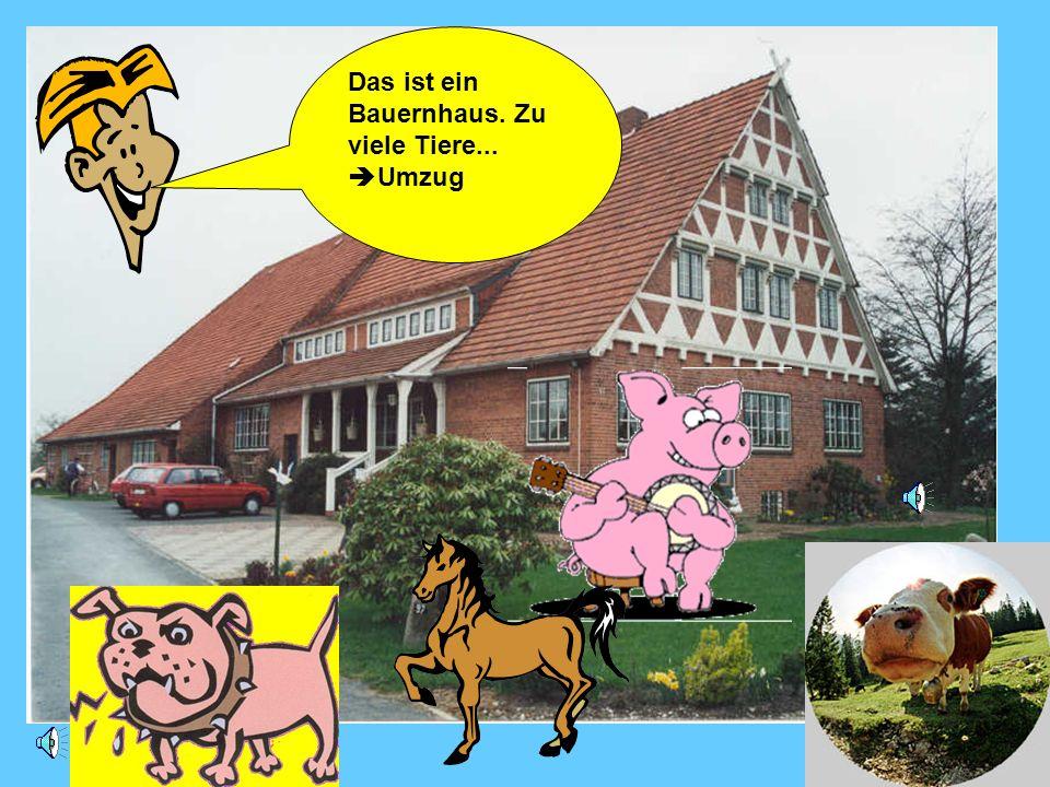 Das ist ein Bauernhaus. Zu viele Tiere... Umzug