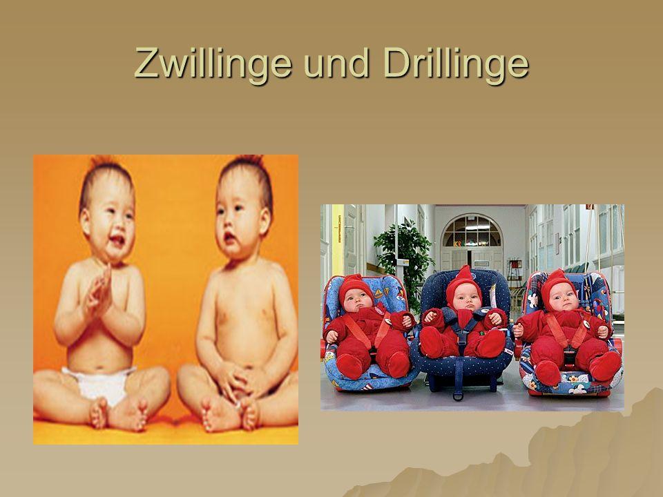 Zwillinge und Drillinge