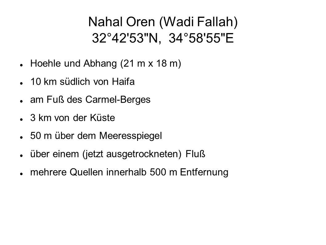 Nahal Oren (Wadi Fallah) 32°42'53