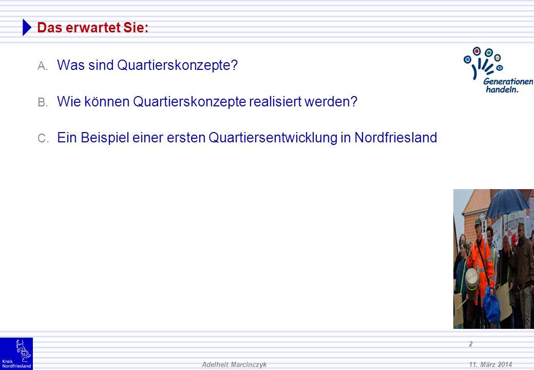11.März 2014Adelheit Marcinczyk 12 B. Wie können quartiersbezogene Wohnkonzepte realisiert werden.