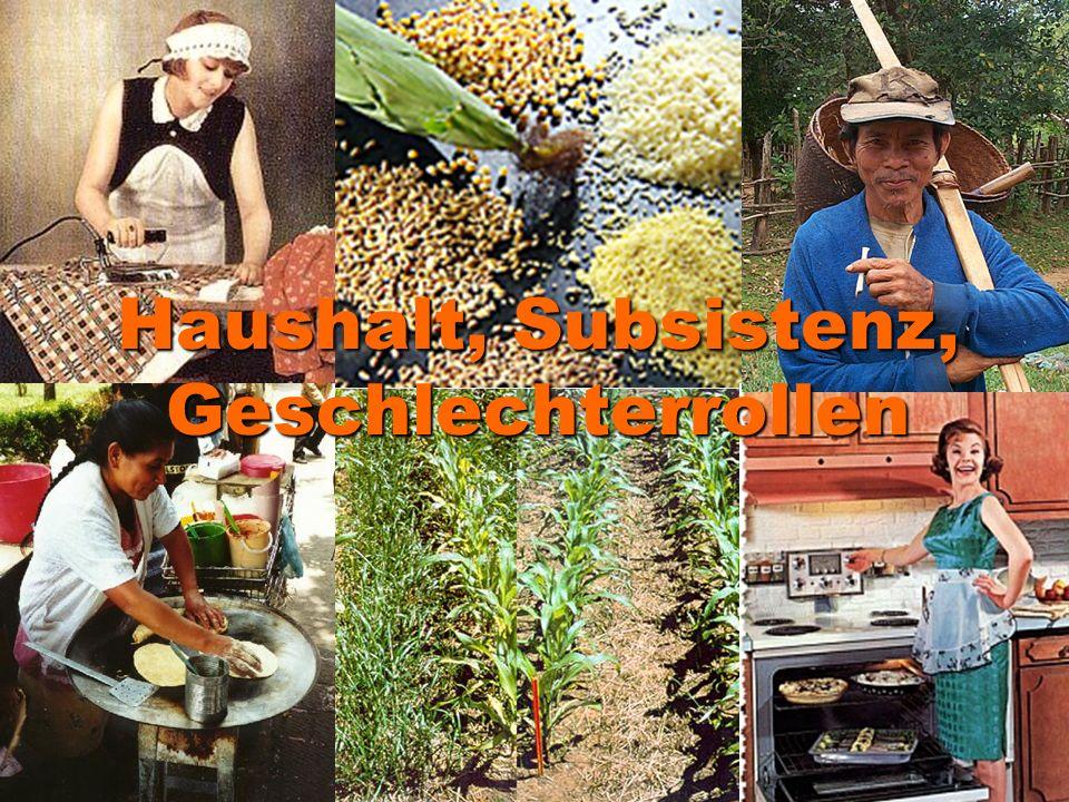 Veränderung: Entstehung von Lohnarbeit und Kapitalismus: Lohnarbeiter Subsistenz wird unsichtbar Standortpolitik Ökologische Vielfalt zerstört Trennung der Familie