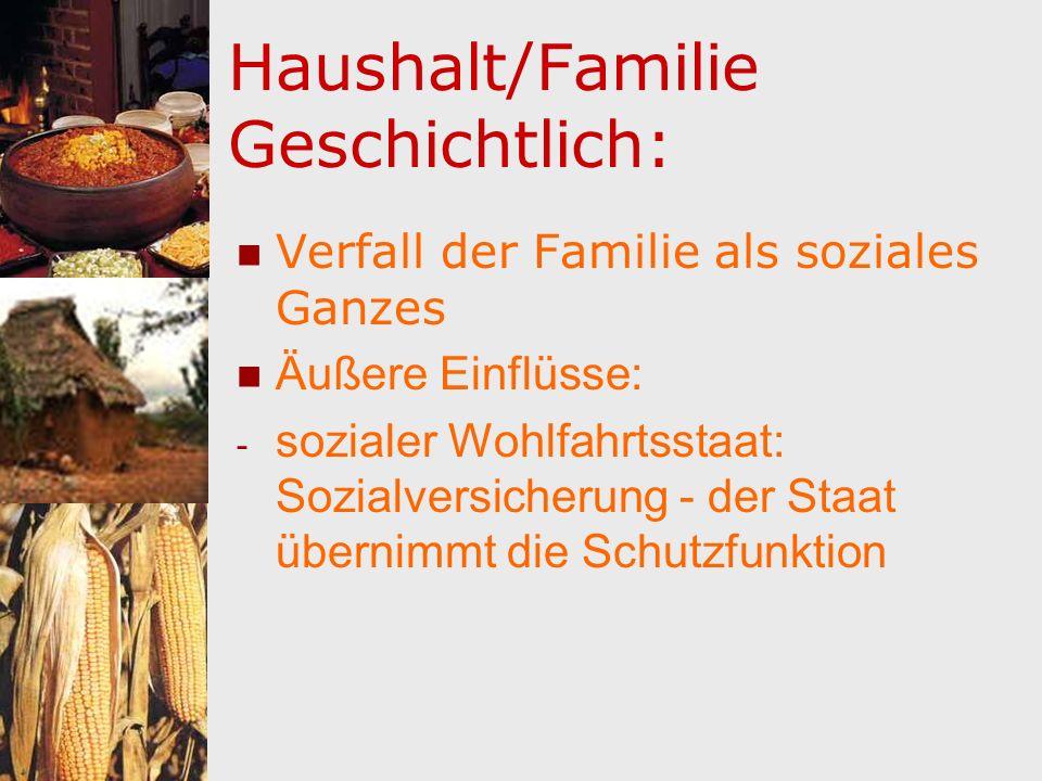 Haushalt/Familie Geschichtlich: Verfall der Familie als soziales Ganzes Äußere Einflüsse: - sozialer Wohlfahrtsstaat: Sozialversicherung - der Staat ü