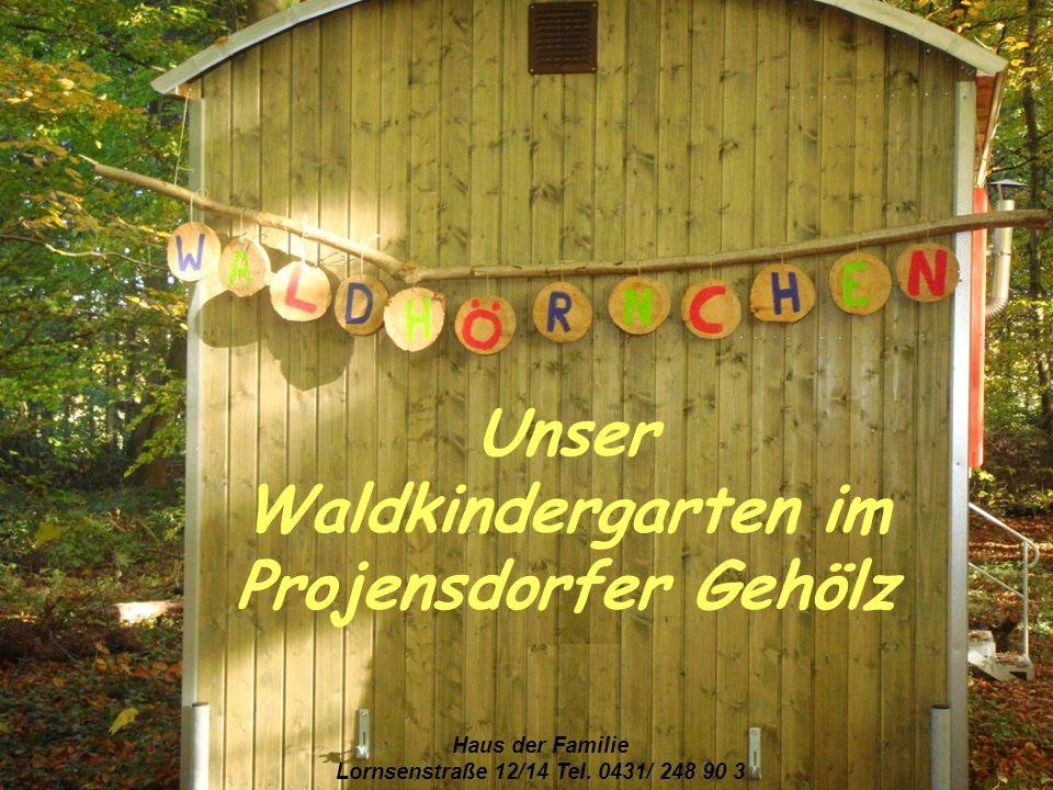 Unser Waldkindergarten im Projensdorfer Gehölz Haus der Familie Lornsenstraße 12/14 Tel. 0431/ 248 90 3