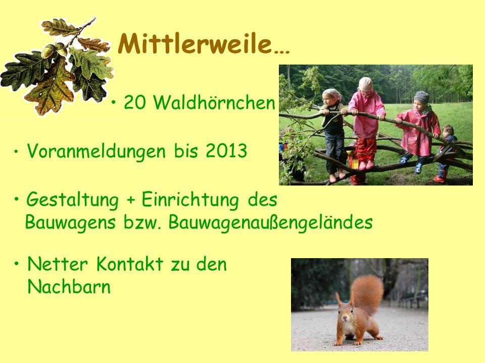 Mittlerweile… 20 Waldhörnchen Voranmeldungen bis 2013 Gestaltung + Einrichtung des Bauwagens bzw. Bauwagenaußengeländes Netter Kontakt zu den Nachbarn