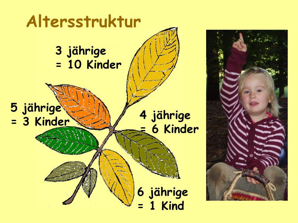 Altersstruktur 6 jährige = 1 Kind 3 jährige = 10 Kinder 4 jährige = 6 Kinder 5 jährige = 3 Kinder