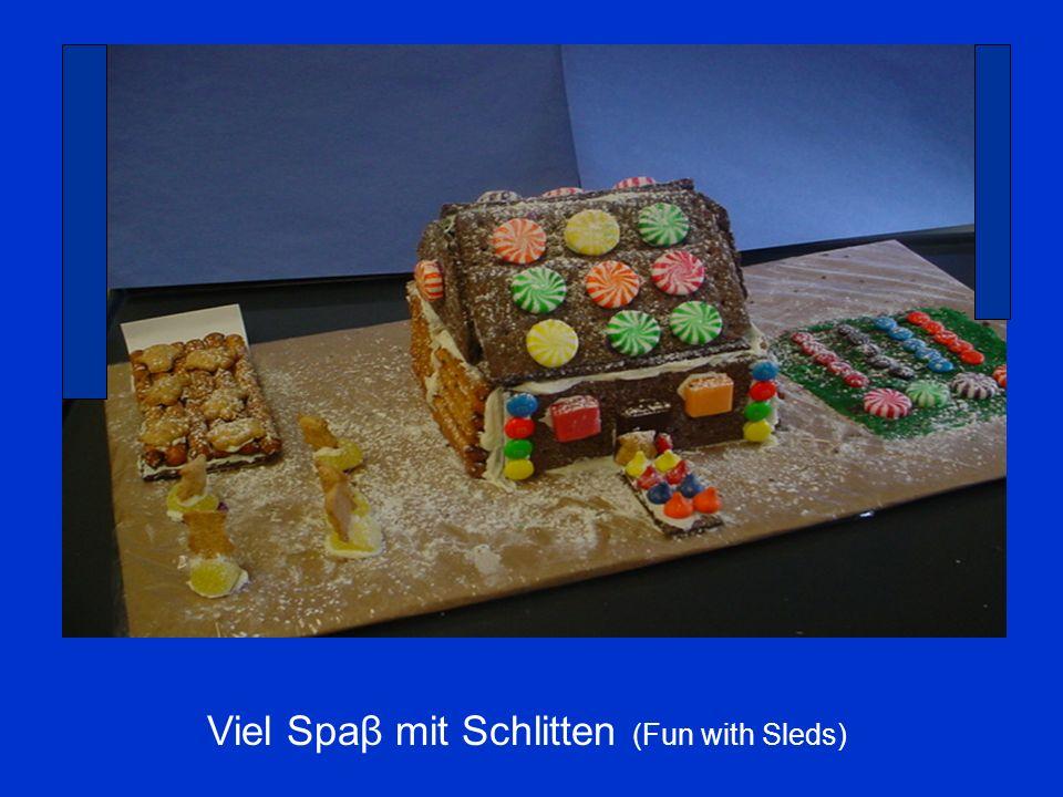 Viel Spaβ mit Schlitten (Fun with Sleds)