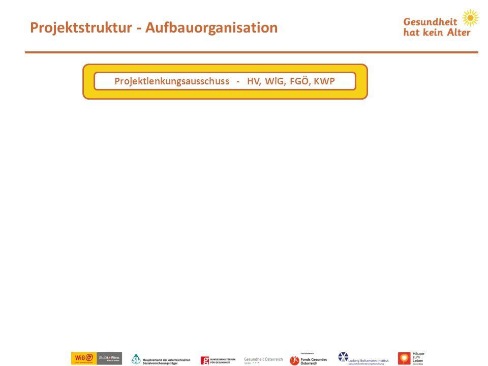 Projektstruktur - Aufbauorganisation Projektlenkungsausschuss - HV, WiG, FGÖ, KWP