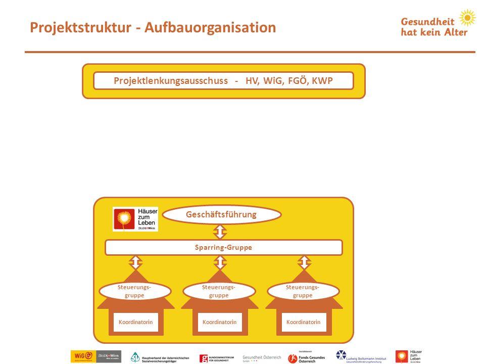Projektstruktur - Aufbauorganisation Koordinatorin Steuerungs- gruppe Koordinatorin Steuerungs- gruppe Koordinatorin Steuerungs- gruppe Sparring-Grupp