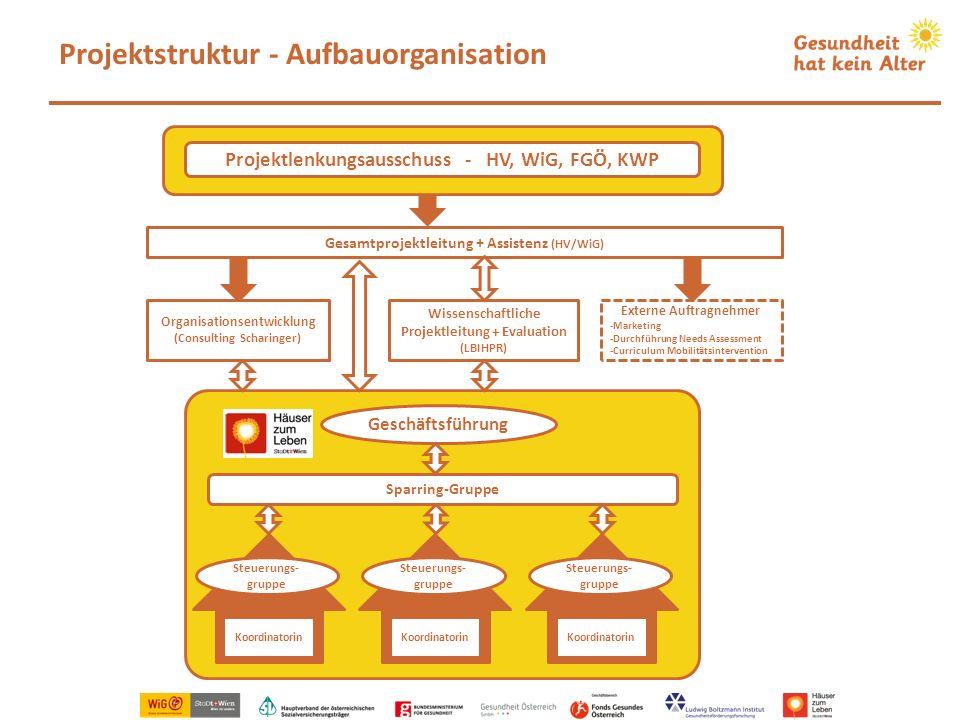 Wissenschaftliche Projektleitung + Evaluation (LBIHPR) Gesamtprojektleitung + Assistenz (HV/WiG) Projektstruktur - Aufbauorganisation Koordinatorin St