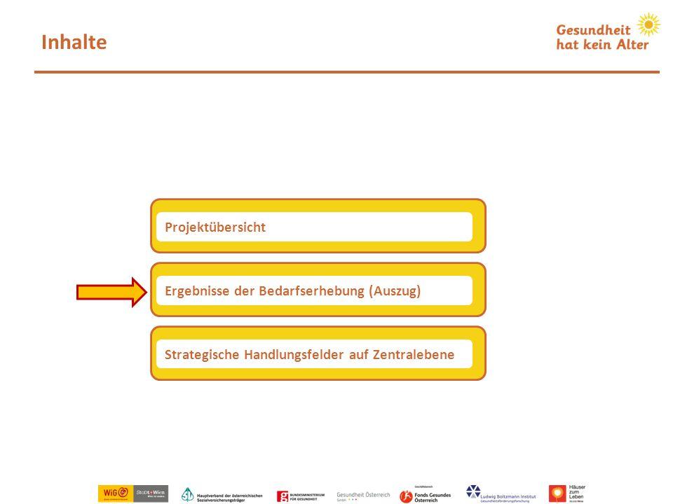 Inhalte Ergebnisse der Bedarfserhebung (Auszug) Projektübersicht Strategische Handlungsfelder auf Zentralebene