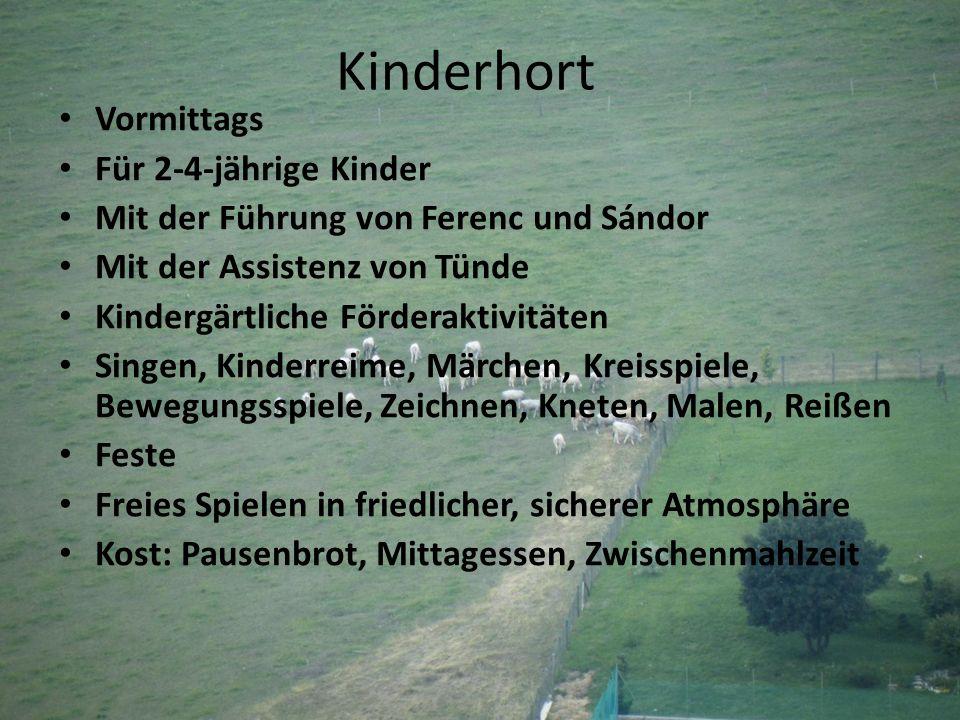 Kinderhort Vormittags Für 2-4-jährige Kinder Mit der Führung von Ferenc und Sándor Mit der Assistenz von Tünde Kindergärtliche Förderaktivitäten Singe