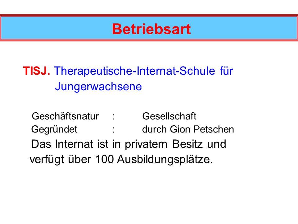 Betriebsart TISJ. Therapeutische-Internat-Schule für Jungerwachsene Geschäftsnatur : Gesellschaft Gegründet: durch Gion Petschen Das Internat ist in p