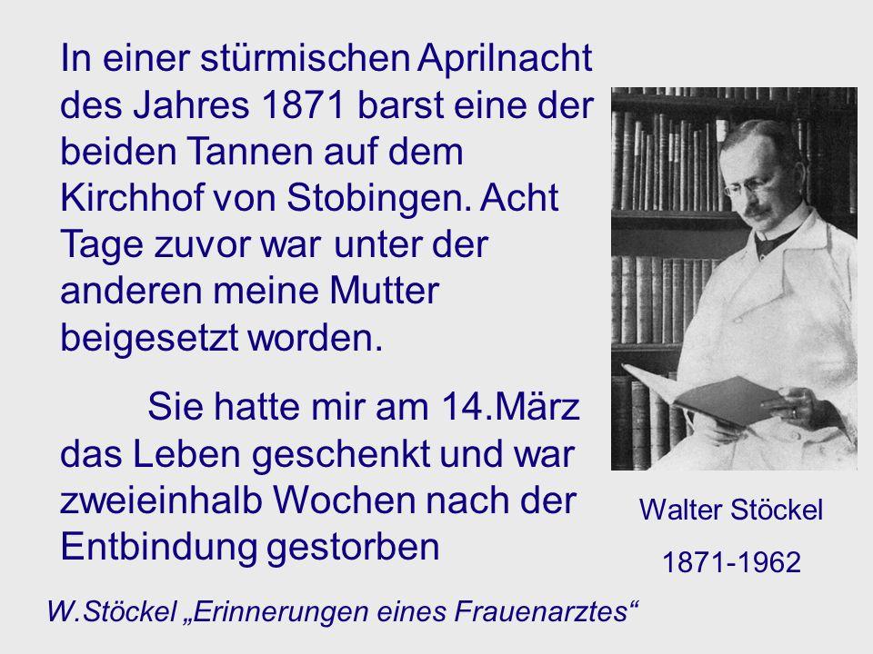 In einer stürmischen Aprilnacht des Jahres 1871 barst eine der beiden Tannen auf dem Kirchhof von Stobingen. Acht Tage zuvor war unter der anderen mei