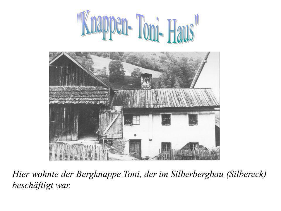 von slawisch gonez = Treiber. Viele der heute noch üblichen Flur-, Haus-, Berg-, Beeren- und Eigennamen erinnern an die einstige Besiedlung durch die