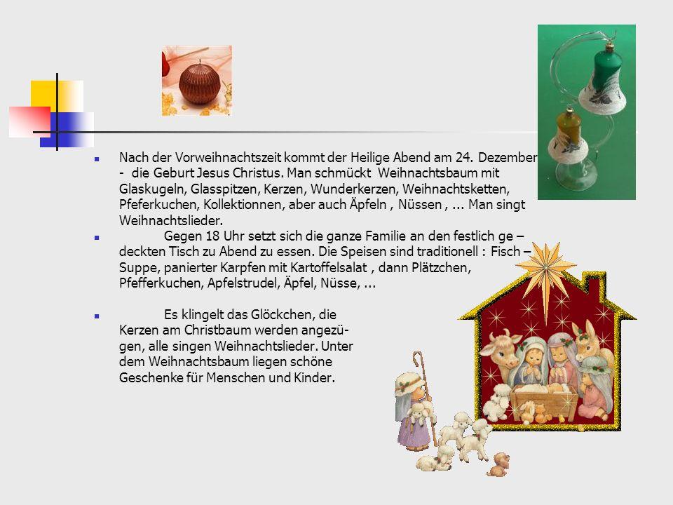 Silvester, Neujahr.3O.12. / 1.1. Diese Tage werden in Deutschland laut und sehr lustig gefeiert.