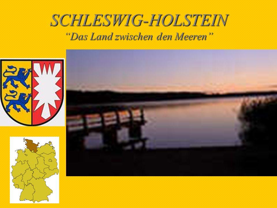 SCHLESWIG-HOLSTEIN IN ZAHLEN Fläche:15.769 km 2 Einwohnerzahl:2.766.000 Einwohnerdichte:175 pro km 2 Hauptstadt:Kiel
