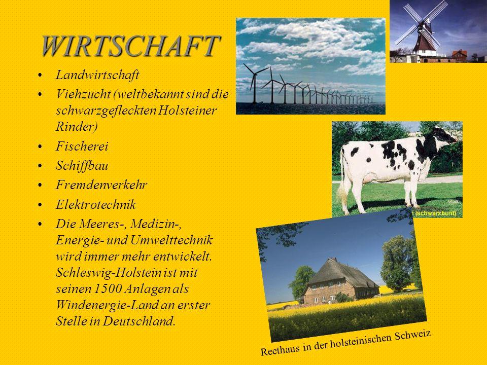 WIRTSCHAFT Landwirtschaft Viehzucht (weltbekannt sind die schwarzgefleckten Holsteiner Rinder) Fischerei Schiffbau Fremdenverkehr Elektrotechnik Die M