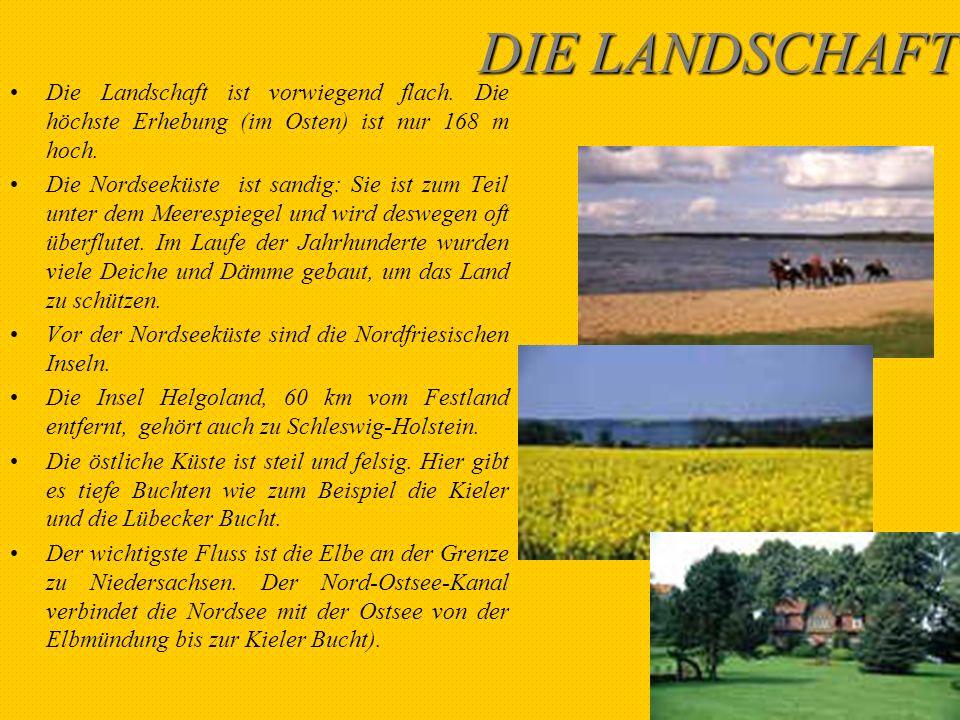 DAS WATTENMEER Das Wattenmeer ist typisch für die Norseeküste, also für Schleswig-Holstein.