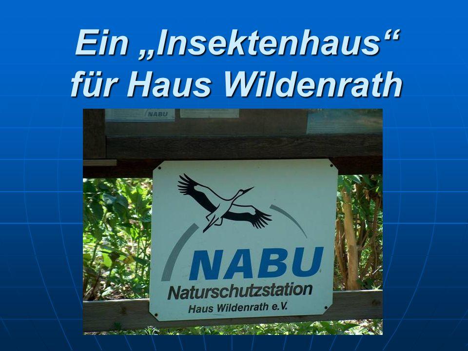 Ein Insektenhaus für Haus Wildenrath