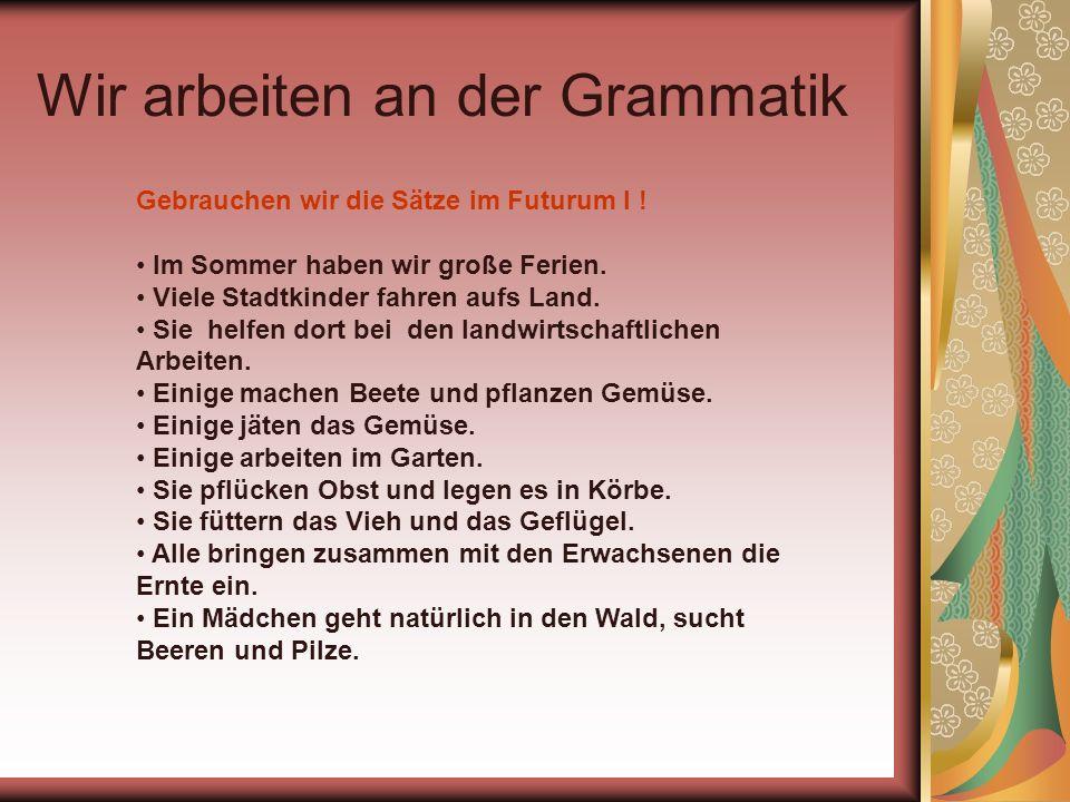 Wir arbeiten an der Grammatik Gebrauchen wir die Sätze im Futurum I ! Im Sommer haben wir große Ferien. Viele Stadtkinder fahren aufs Land. Sie helfen