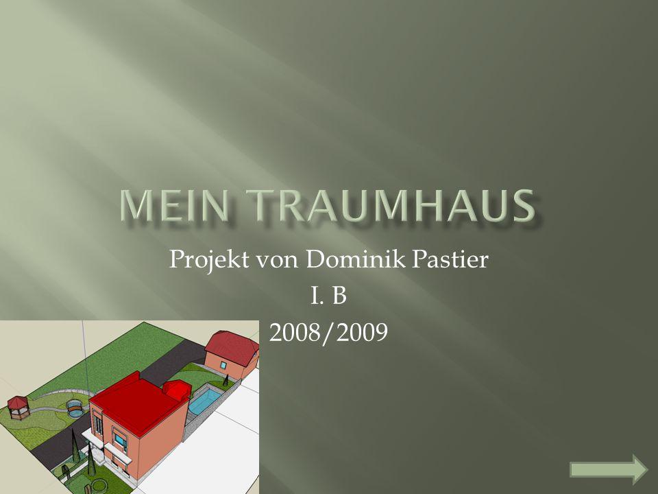 Projekt von Dominik Pastier I. B 2008/2009
