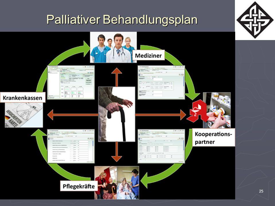 Dr. med. R. Cairns25 Palliativer Behandlungsplan