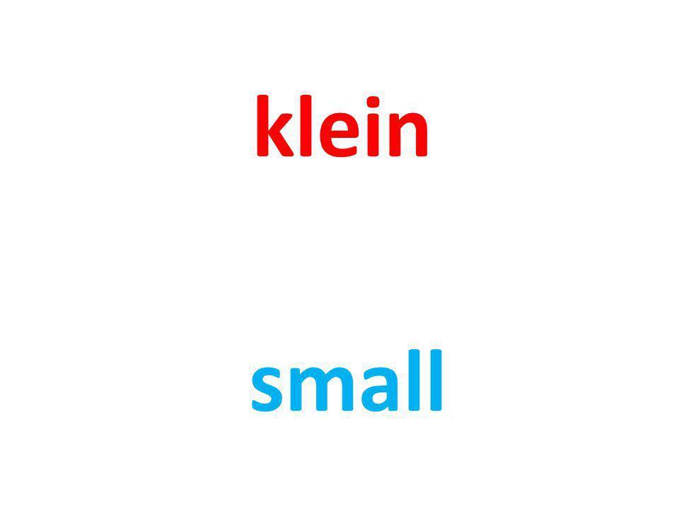 klein small