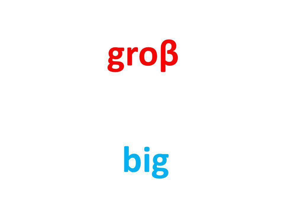 groβ big