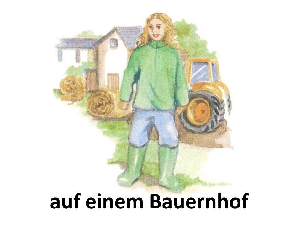auf einem Bauernhof
