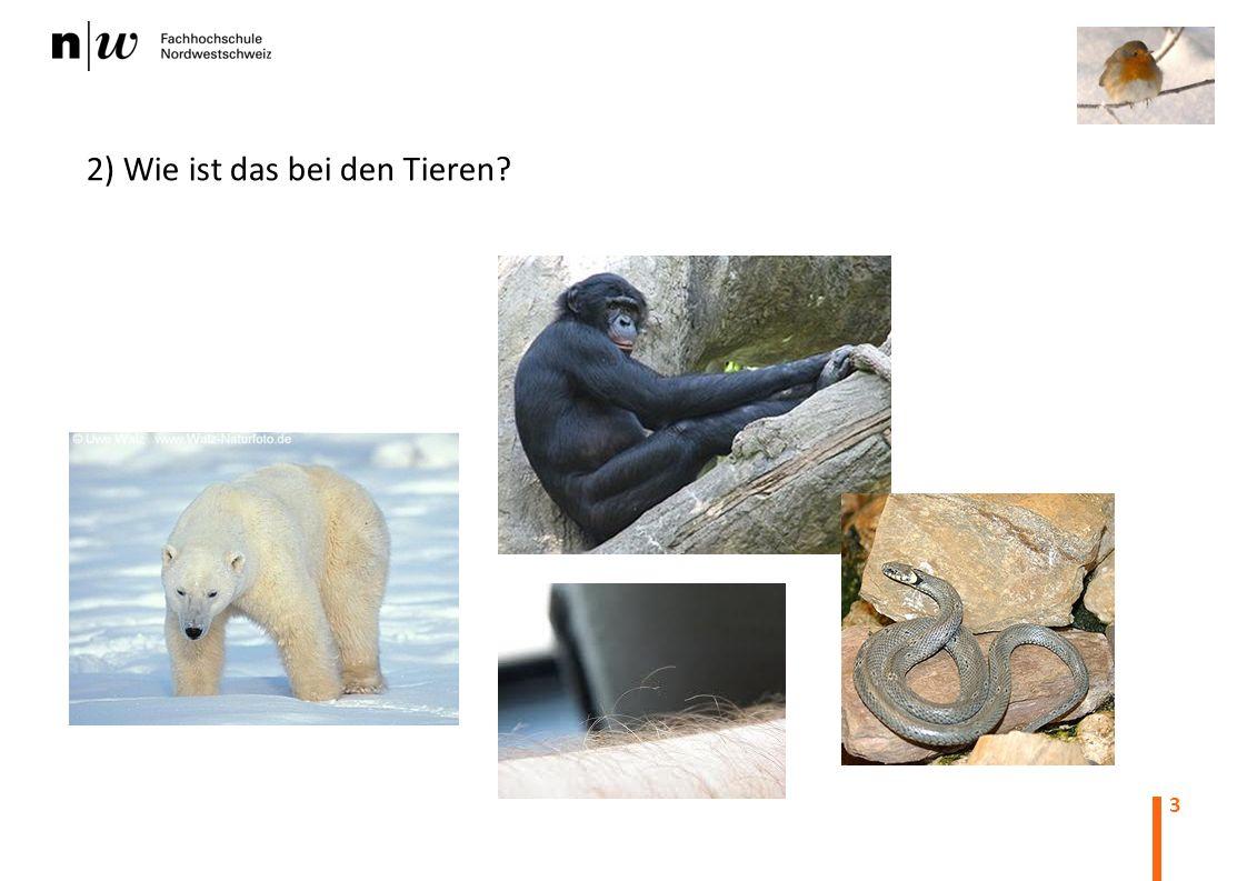 3 2) Wie ist das bei den Tieren?