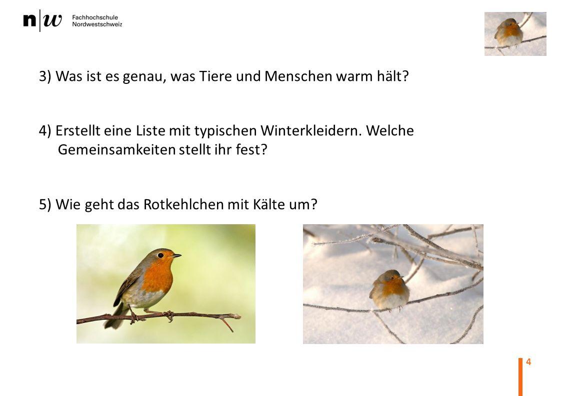 4 3) Was ist es genau, was Tiere und Menschen warm hält? 4) Erstellt eine Liste mit typischen Winterkleidern. Welche Gemeinsamkeiten stellt ihr fest?