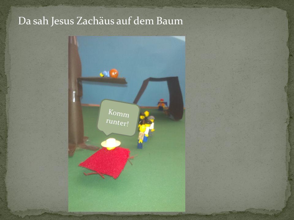 Da sah Jesus Zachäus auf dem Baum Komm runter!