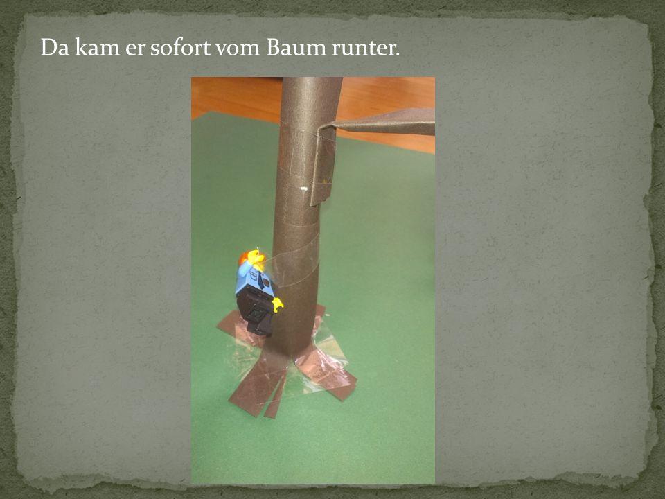 Da kam er sofort vom Baum runter.
