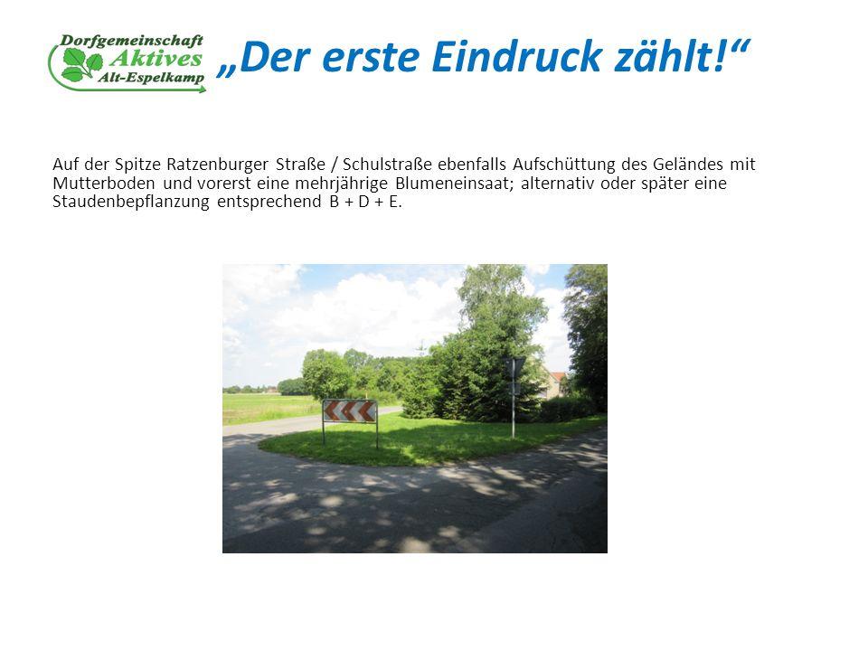 Der erste Eindruck zählt! Auf der Spitze Ratzenburger Straße / Schulstraße ebenfalls Aufschüttung des Geländes mit Mutterboden und vorerst eine mehrjä