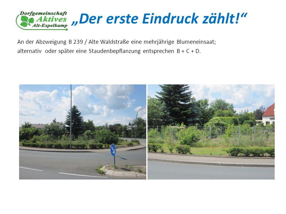 Der erste Eindruck zählt! An der Abzweigung B 239 / Alte Waldstraße eine mehrjährige Blumeneinsaat; alternativ oder später eine Staudenbepflanzung ent