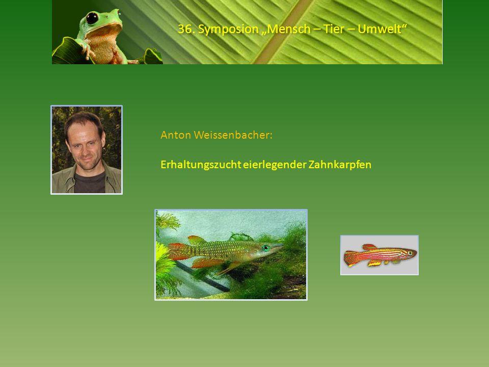 36. Symposion Mensch – Tier – Umwelt Anton Weissenbacher: Erhaltungszucht eierlegender Zahnkarpfen