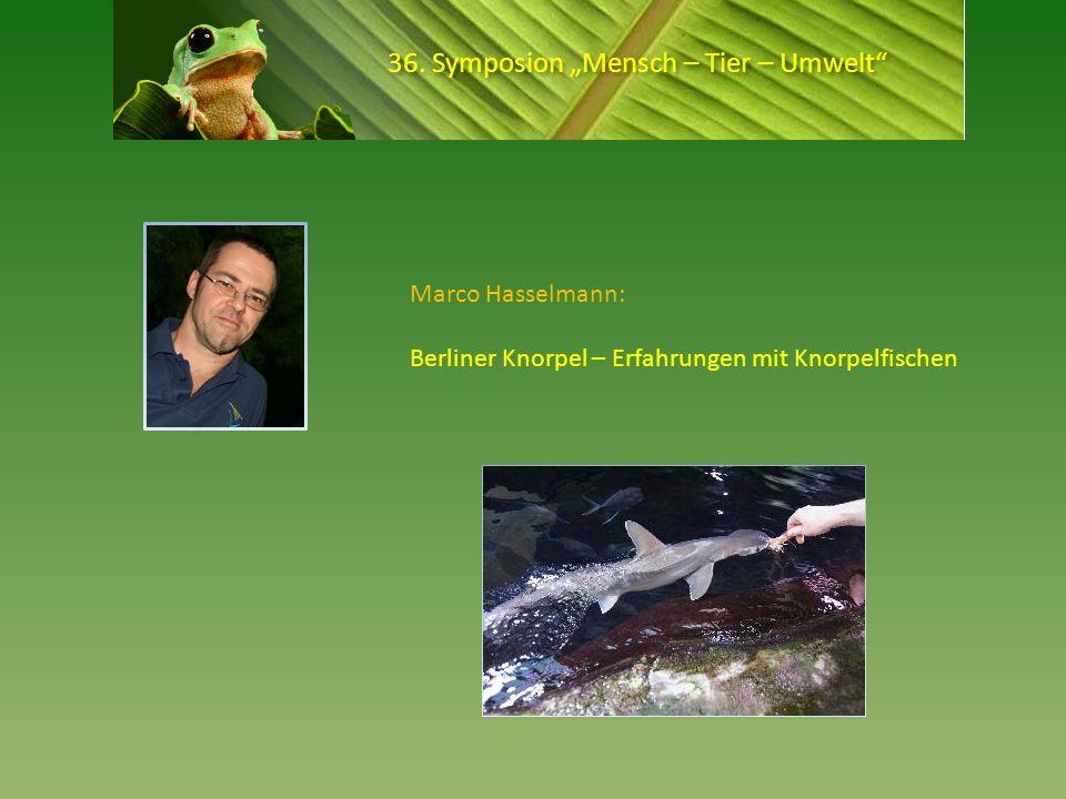 36. Symposion Mensch – Tier – Umwelt Marco Hasselmann: Berliner Knorpel – Erfahrungen mit Knorpelfischen
