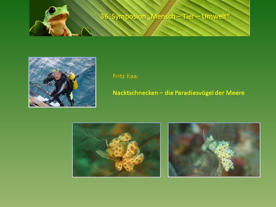 36. Symposion Mensch – Tier – Umwelt Fritz Kaa: Nacktschnecken – die Paradiesvögel der Meere