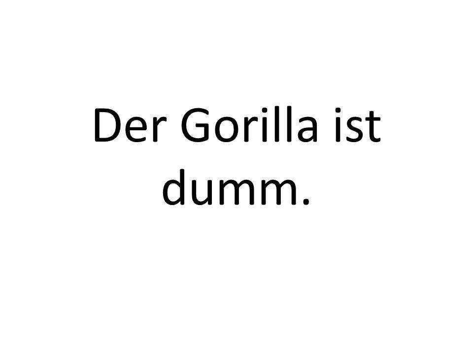 Der Gorilla ist dumm.