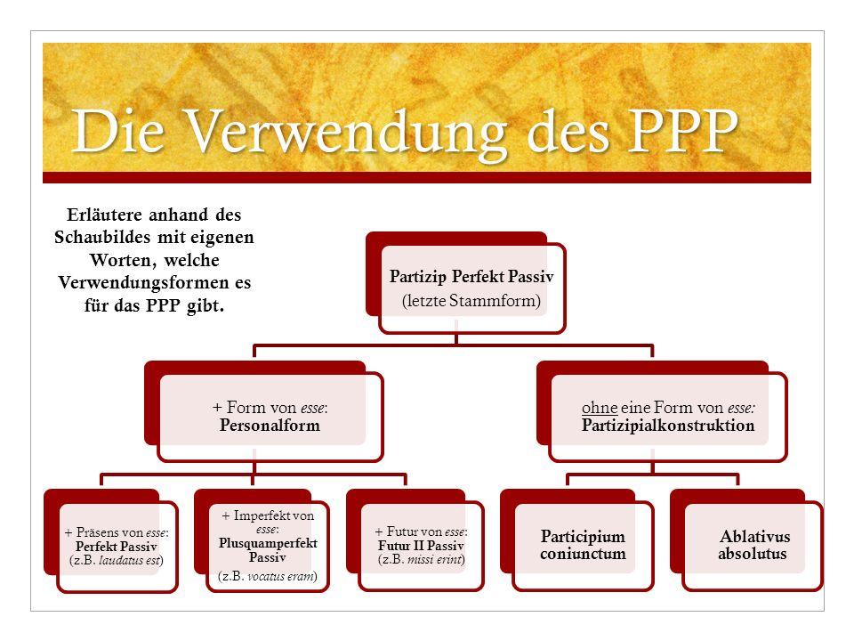 Die Verwendung des PPP Partizip Perfekt Passiv (letzte Stammform) + Form von esse : Personalform + Präsens von esse : Perfekt Passiv (z.B. laudatus es