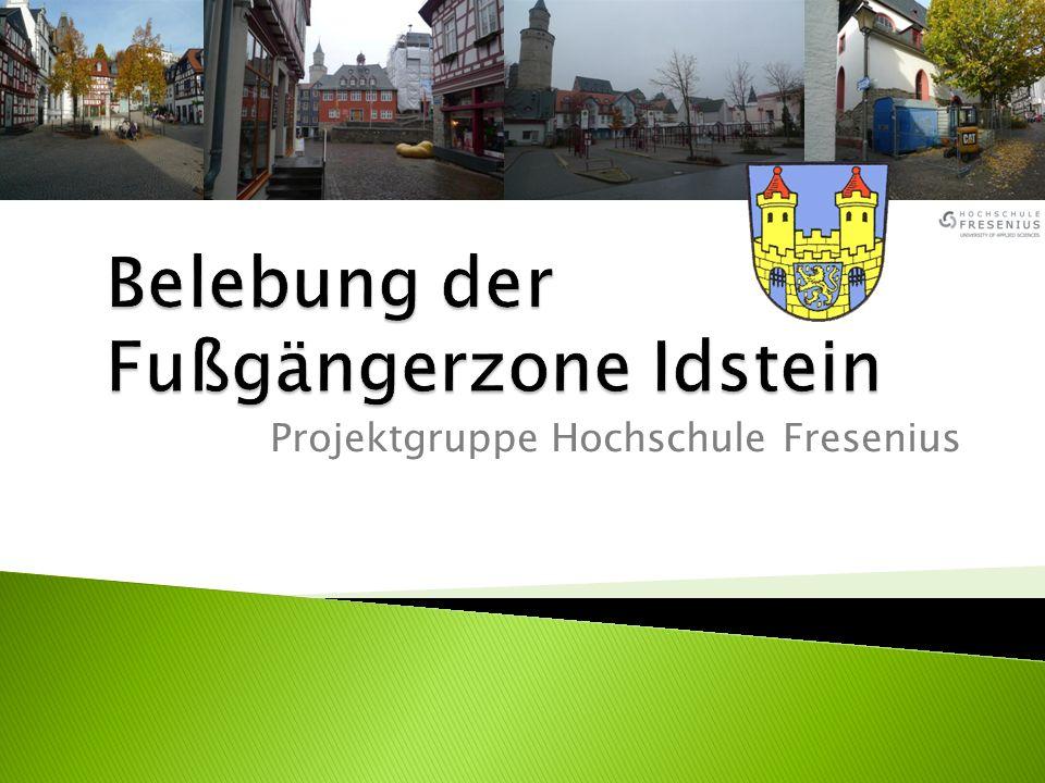 Projektgruppe Hochschule Fresenius