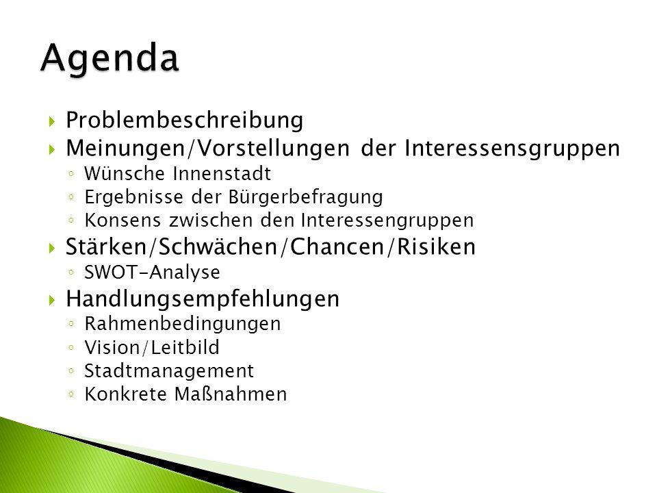 Problembeschreibung Meinungen/Vorstellungen der Interessensgruppen Wünsche Innenstadt Ergebnisse der Bürgerbefragung Konsens zwischen den Interessengr
