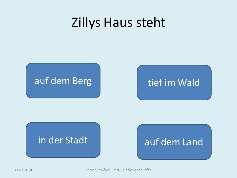blau rotbunt schwarz Zilly schwang wieder den Zauberstab und Zingaro war nun wieder Lesespur Cécile Fretz, Barbara Schüpfer11.03.2014