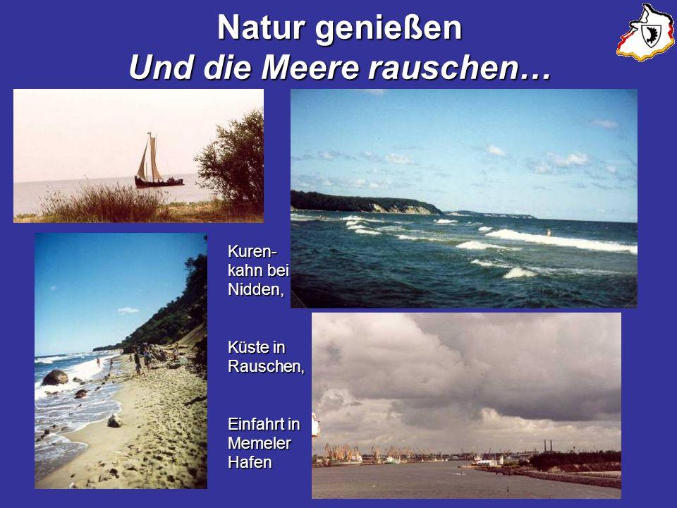 Natur genießen Und die Meere rauschen… Kuren- kahn bei Nidden, Küste in Rauschen, Einfahrt in Memeler Hafen