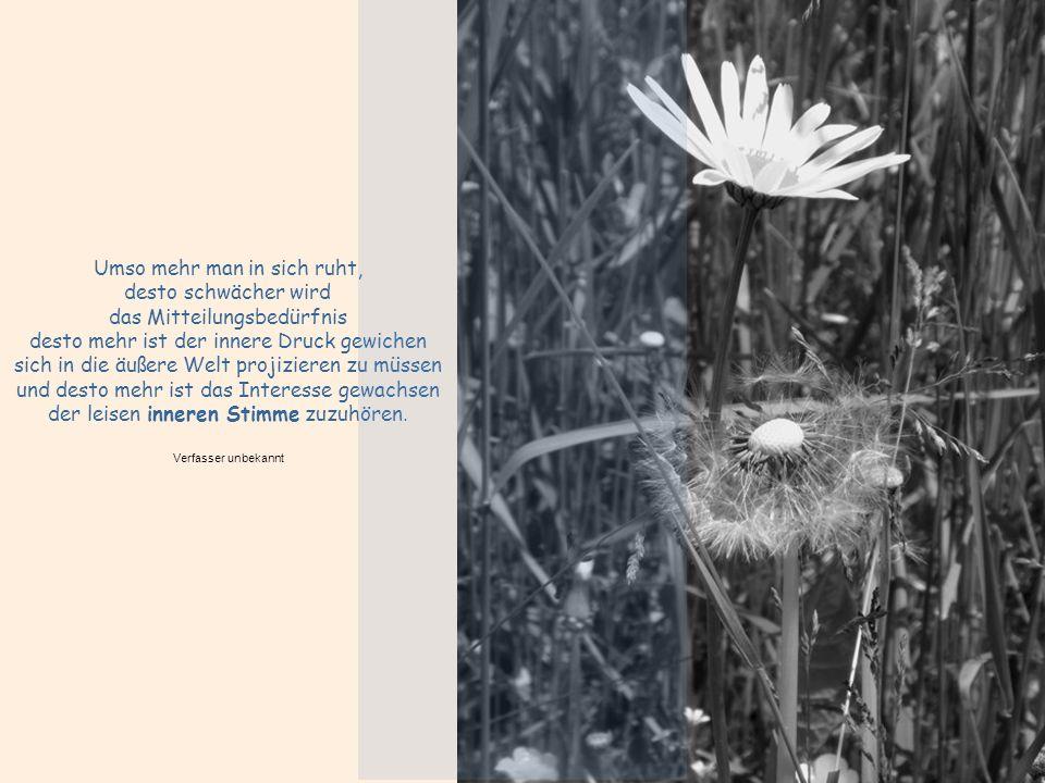 REICHTUM Wirklich reich ist, wer mehr Träume in seiner Seele hat, als die Realität zerstören kann. Hans Kruppa