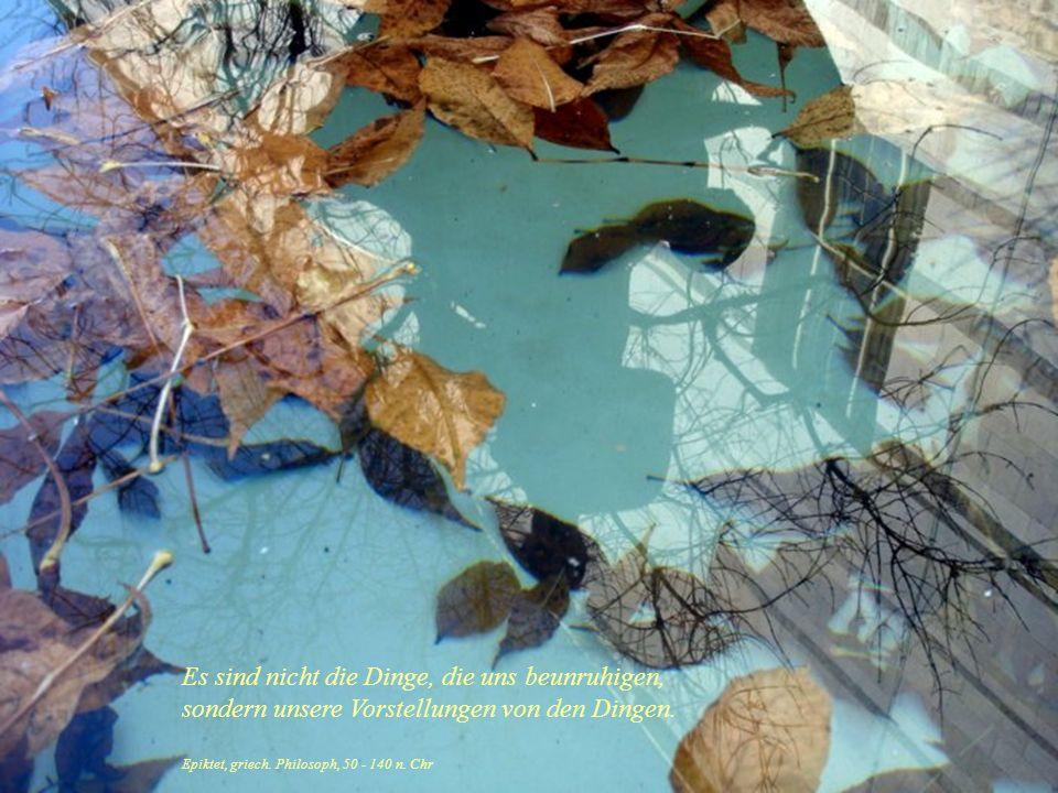 Rainer Maria Rilke Nicht rechnen und nicht zählen sondern reifen wie ein Baum, der seine Säfte nicht drängt und getrost in den Stürmen des Frühlings s