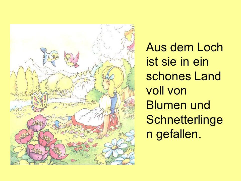 Aus dem Loch ist sie in ein schones Land voll von Blumen und Schnetterlinge n gefallen.