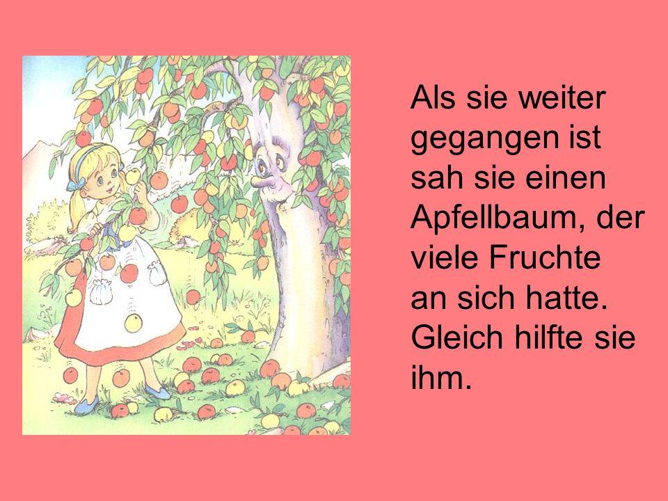 Als sie weiter gegangen ist sah sie einen Apfellbaum, der viele Fruchte an sich hatte. Gleich hilfte sie ihm.