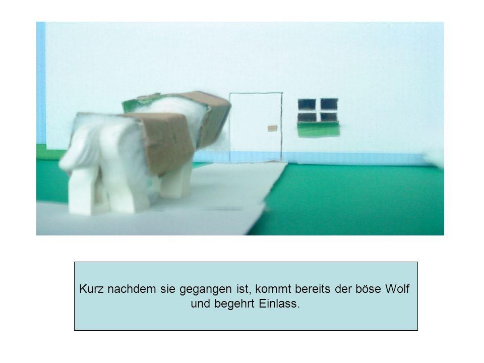 Die Geißlein erkennen jedoch, dass der Wolf und nicht ihre Mutter vor der Türe steht, und lassen ihn nicht hinein.
