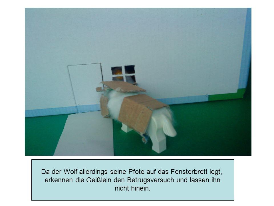 Für den dritten Versuch lässt sich der Wolf Teig auf seinen Fuß streichen und zwingt danach den Müller diesen mit Mehl zu bestäuben.